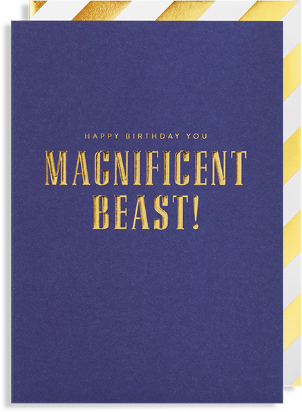 Malarkey Cards Brighton sell funky quirky unusual modern cool card cards greetings greeting original classic wacky contemporary art photographic birthday fun vintage Lagom Design happy birthday you magnificent beast post co 1651