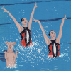 Malarkey Cards Brighton sell funky quirky unusual modern cool original classic wacky contemporary art illustration photographic distinctive vintage retro funny rude humorous birthday east end prints pulpbrother PULBRO018c synchronised swimming dog