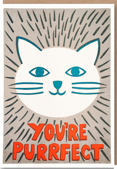 Malarkey Cards Brighton sell funky quirky kitsch unusual modern cool original classic wacky contemporary art illustration photographic distinctive vintage retro funny rude cute humorous birthday seasonal greetings cards prints frames socks bench sukie 1973 nineteenseventythree youre purrfect cat